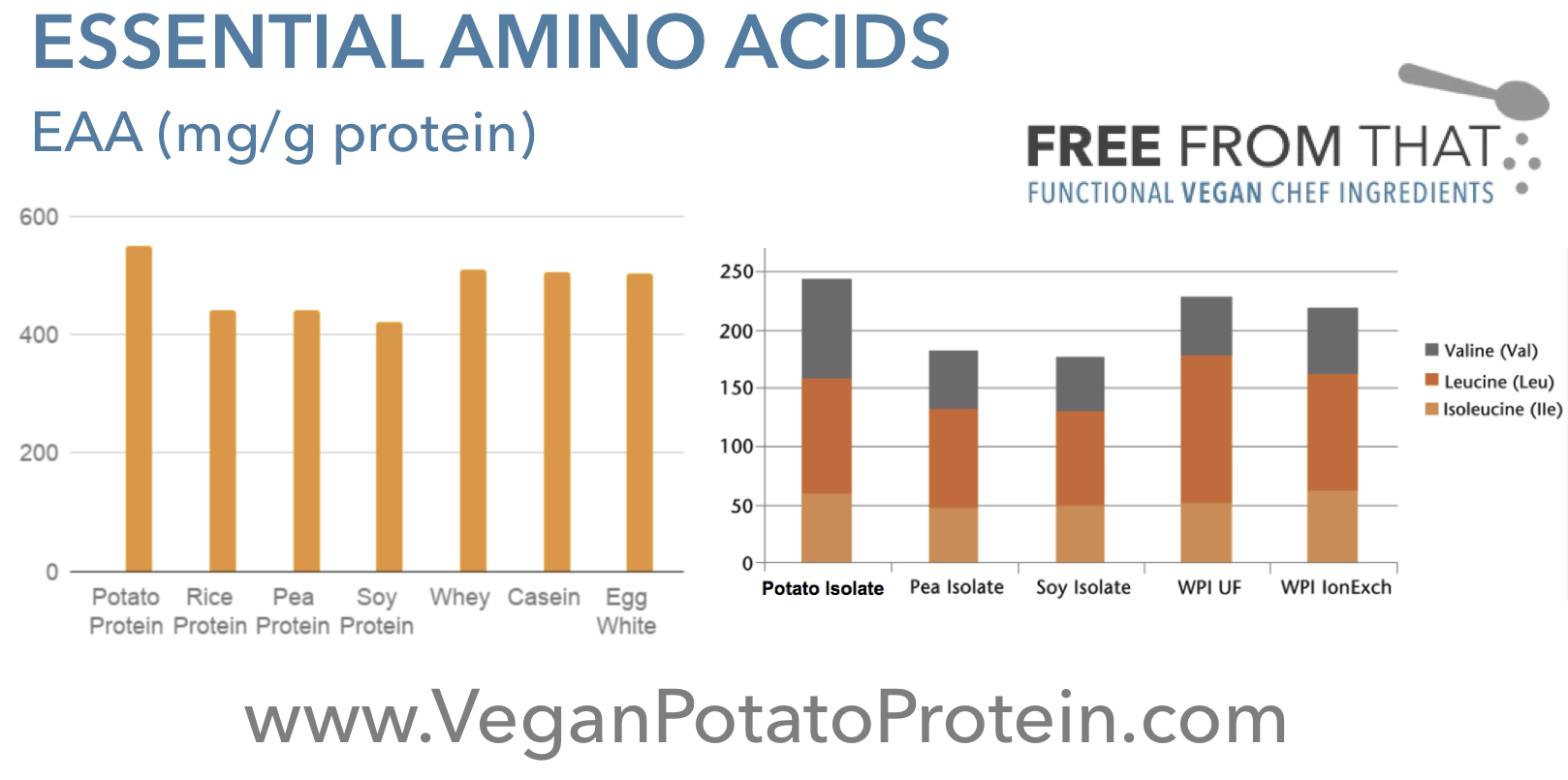 potato-protein-essential-amino-acids.jpg